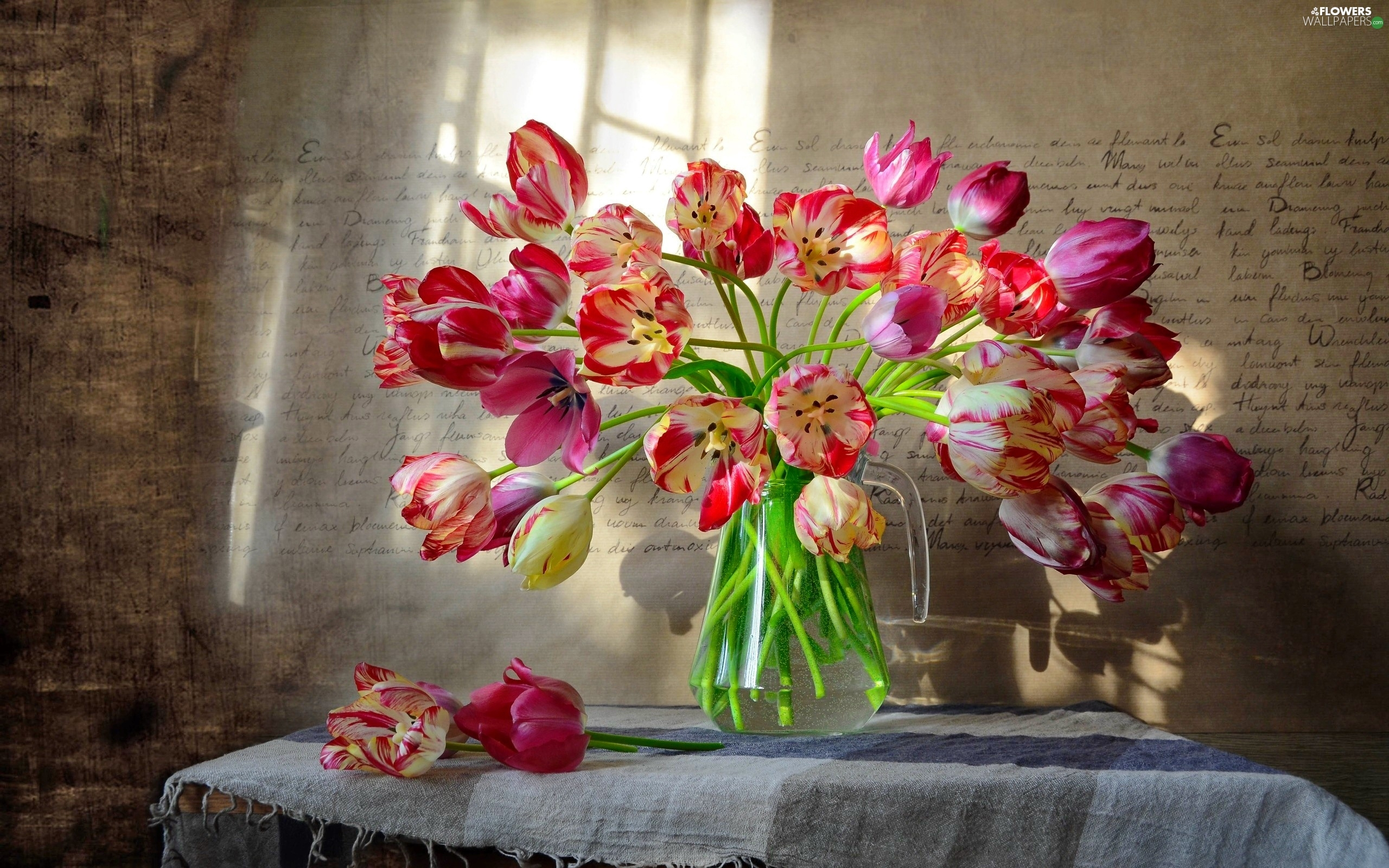 flash, ligh, luminosity, sun, Tulips, bouquet, Window, Vase