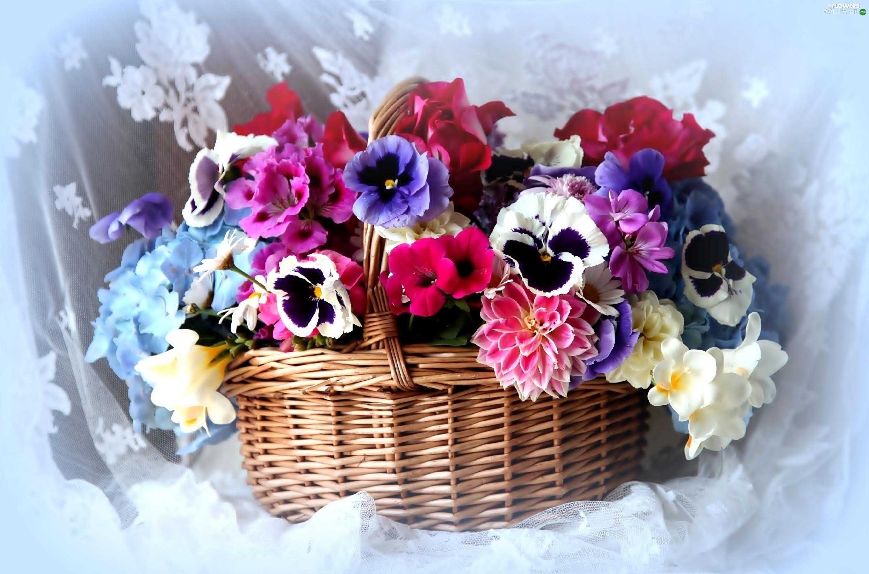 pansies  dahlias  colorful  flowers  bouquet