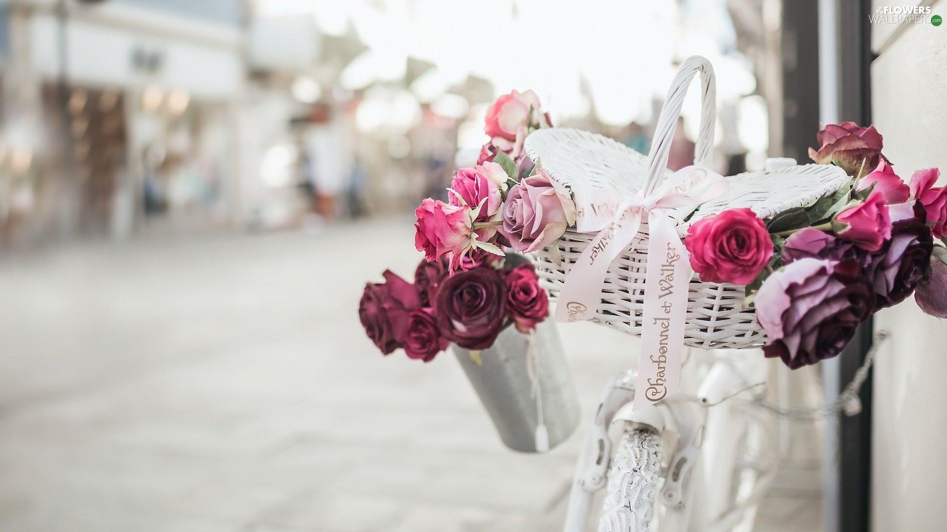 roses, basket, Bike, blur, White