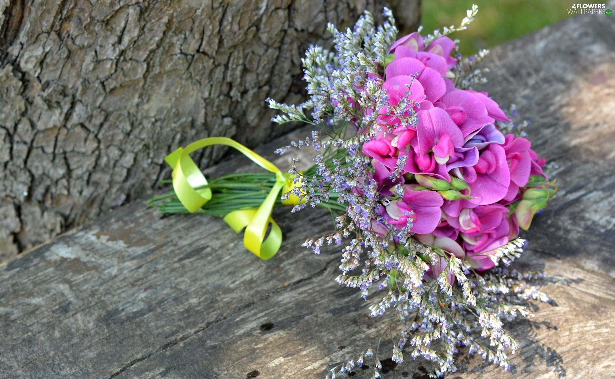 trees, board, bouquet, trunk, Sweet Peas