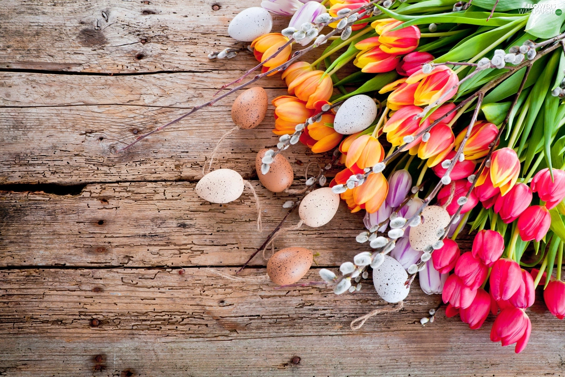 Tulips, database, Easter, eggs, composition