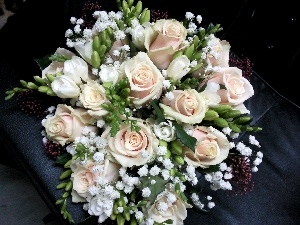 roses, bouquet, cream