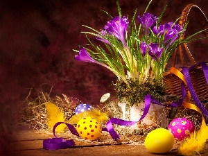 crocuses, Easter, eggs