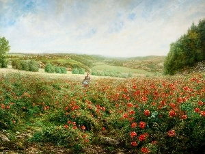Women, papavers, Meadow