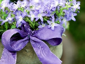bouquet, flowers, ribbon, Blue