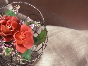 roses, Metal, basket