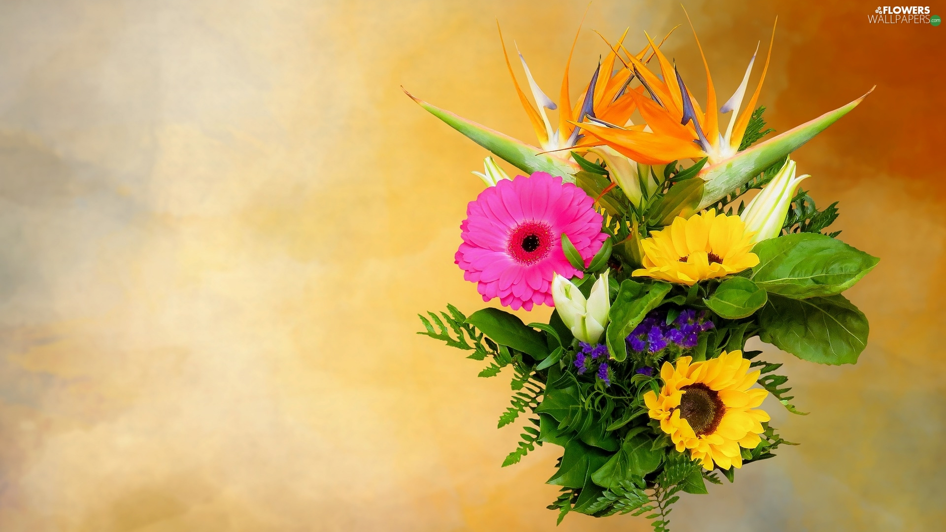 decorative Sunflowers, bouquet, Yellow, Gerbera, Flowers, Strelitzia, background