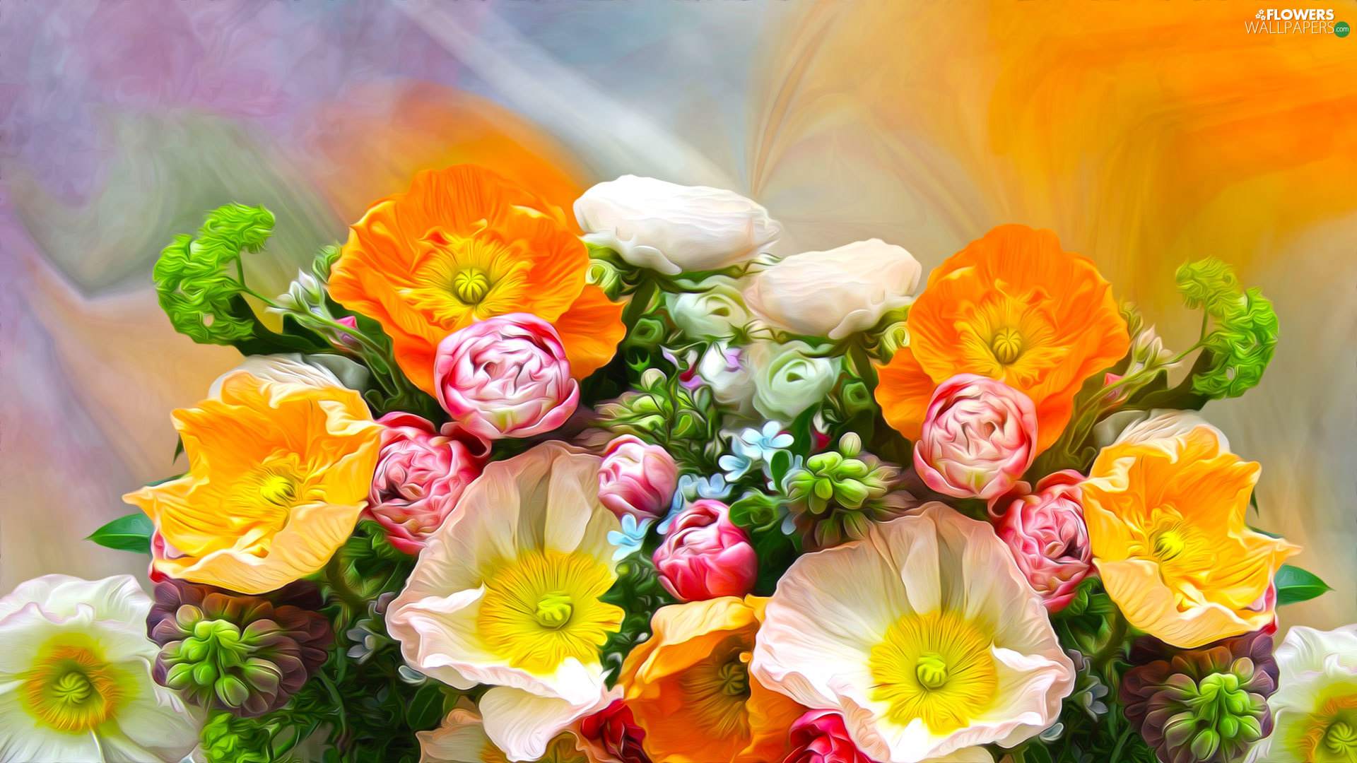 Flowers, papavers, graphics, bouquet