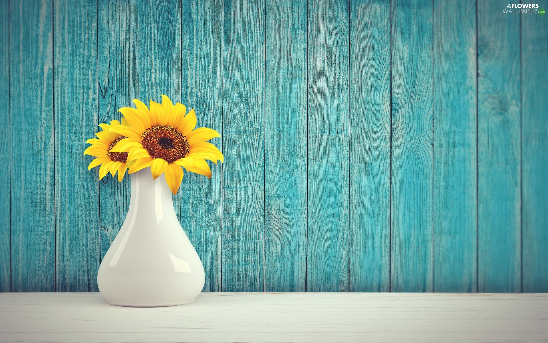 Blue, boarding, Two cars, decorative Sunflowers, vase