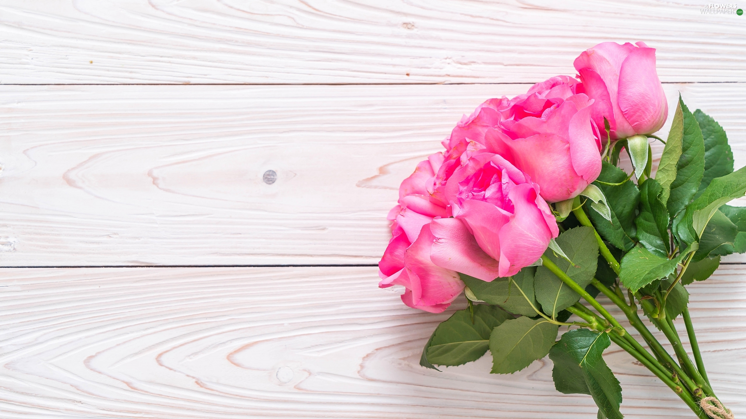 Colourfull Flowers, roses, boarding, Pink