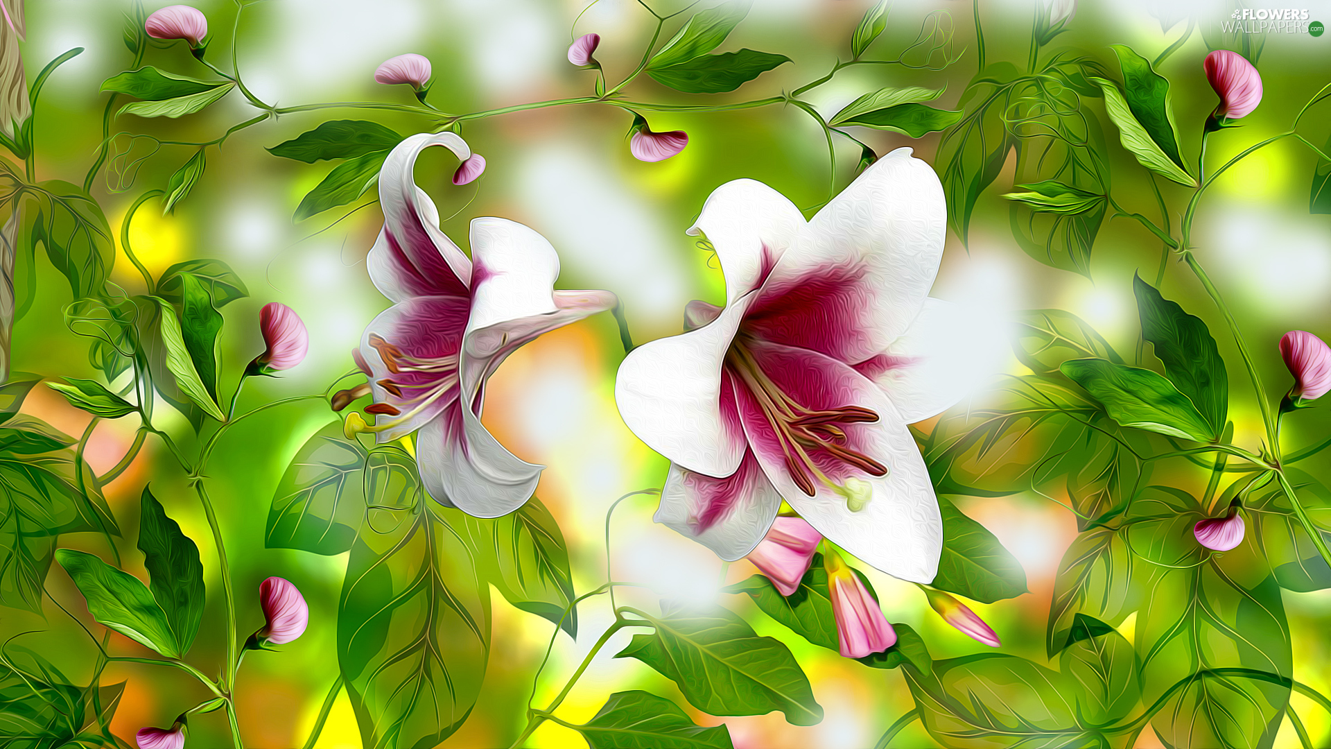 Flowers, Fragrant Peas, graphics, lilies
