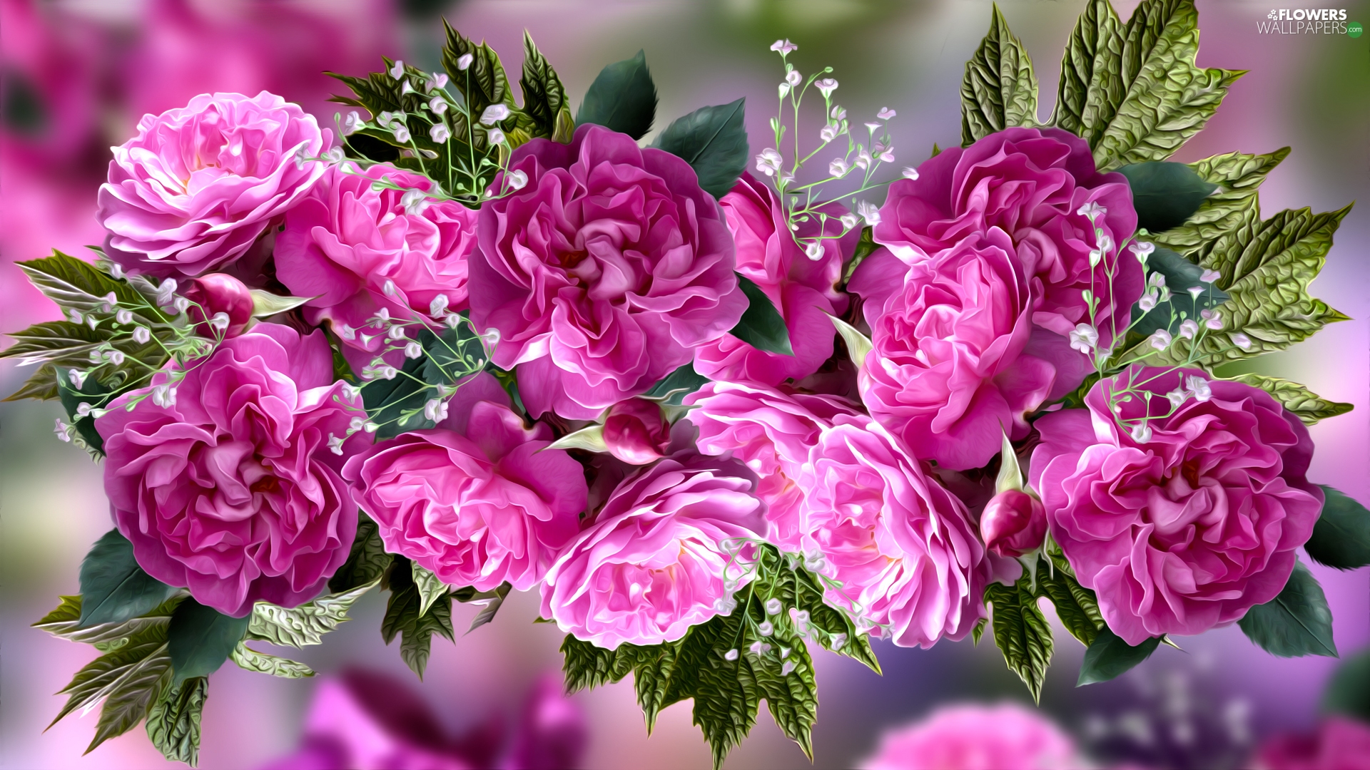 leaves, graphics, developed, roses, Pink