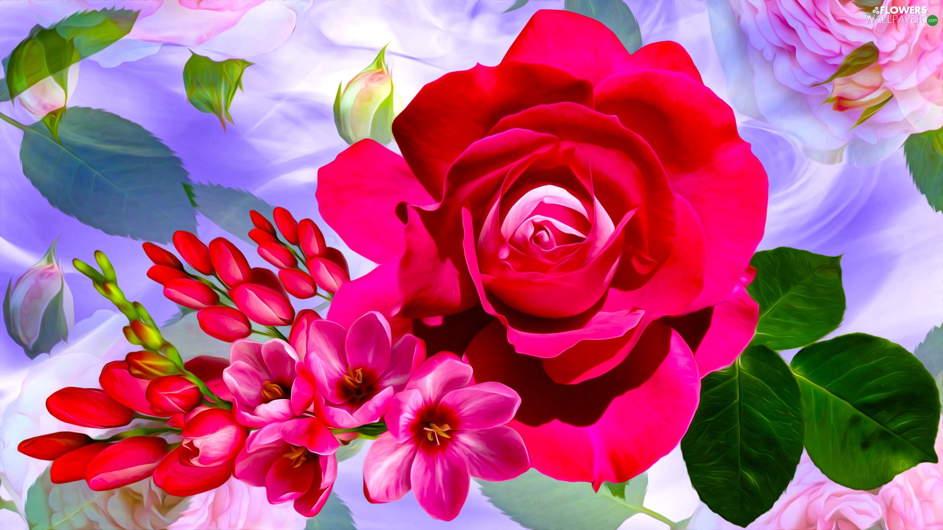 rose, graphics, Flowers, Freesias, Red