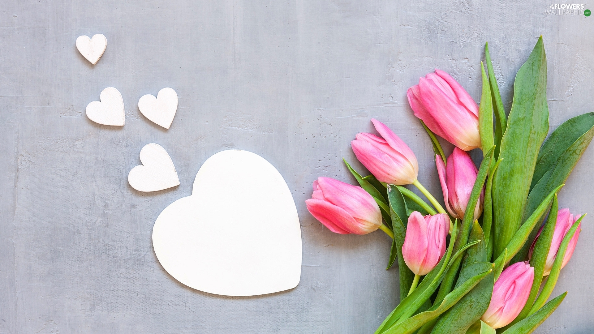 Tulips, Grey, background, heart