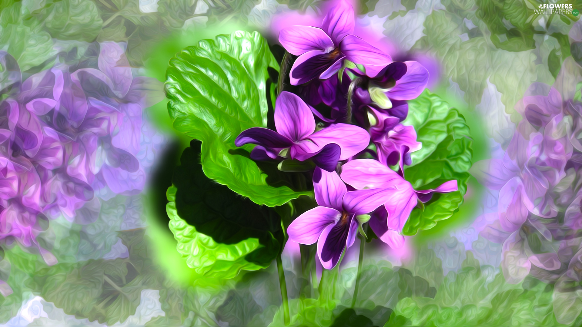 Flowers, leaves, graphics, fragrant violets