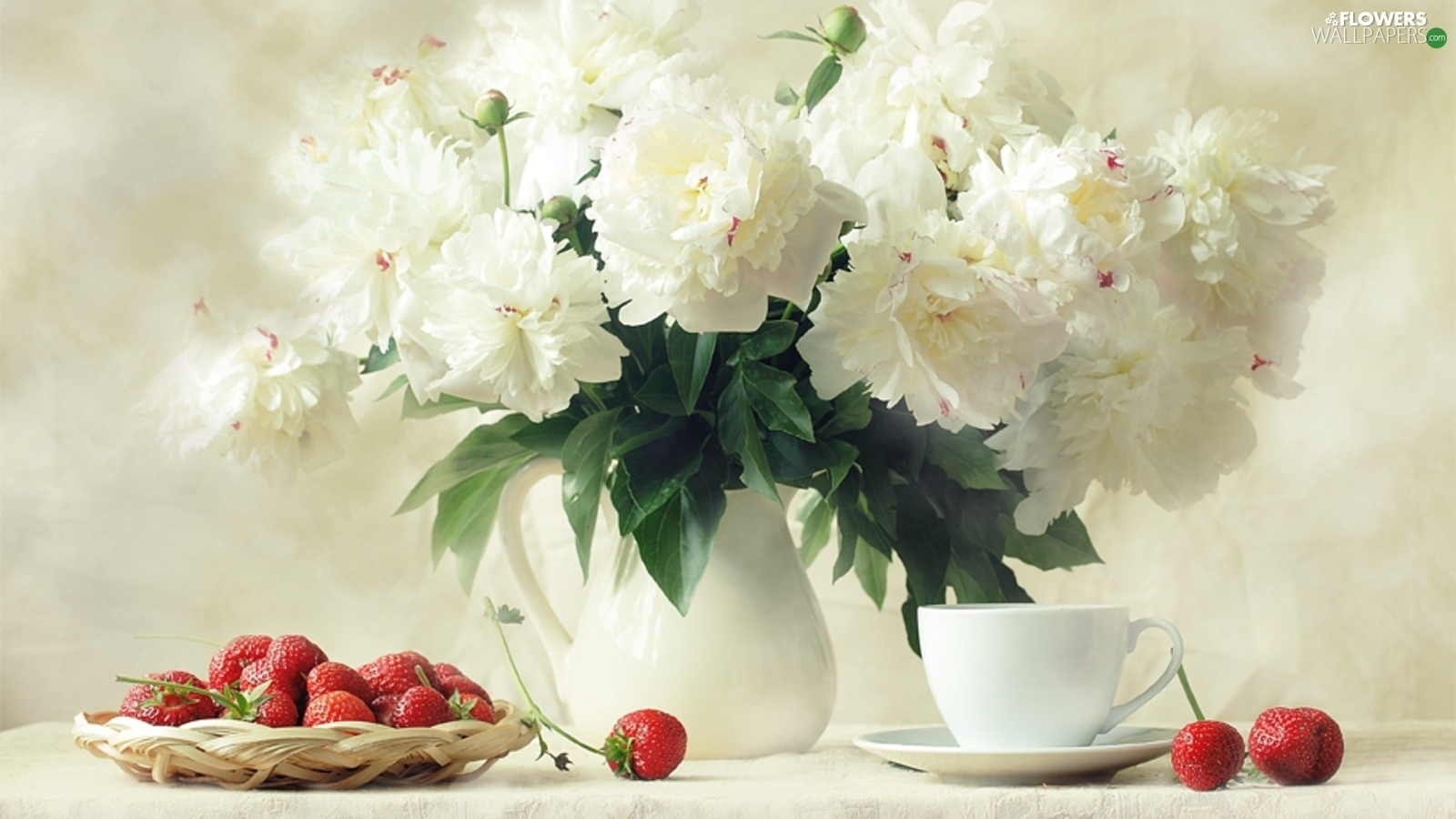 Strawberries White Peonies Flowers Wallpapers 1600x900
