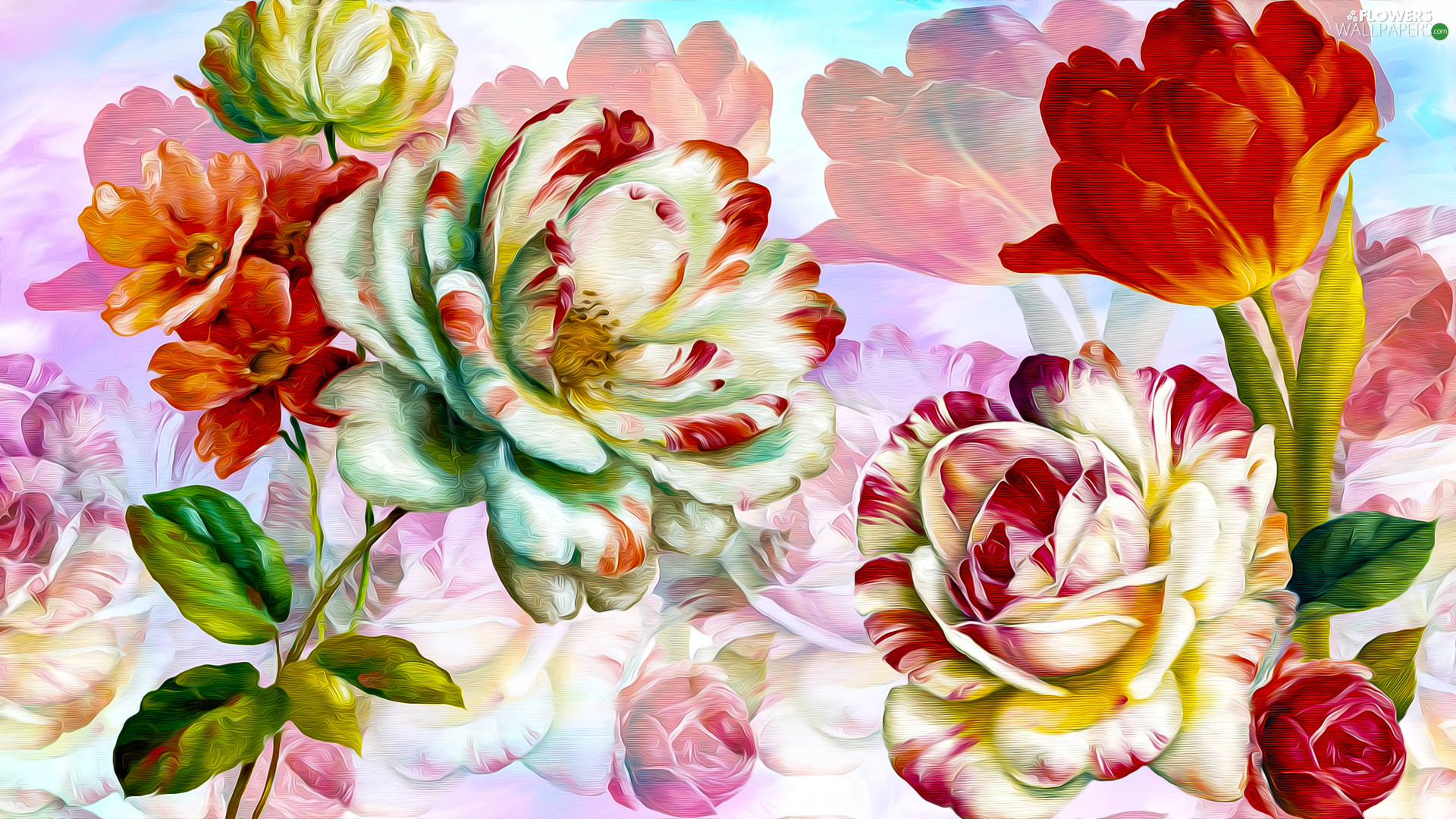 Flowers, roses, graphics, tulip