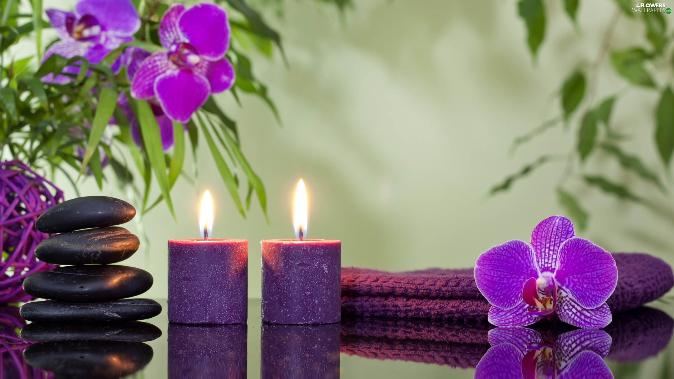 orchids, Spa, Candles, purple, composition, Two, Stones