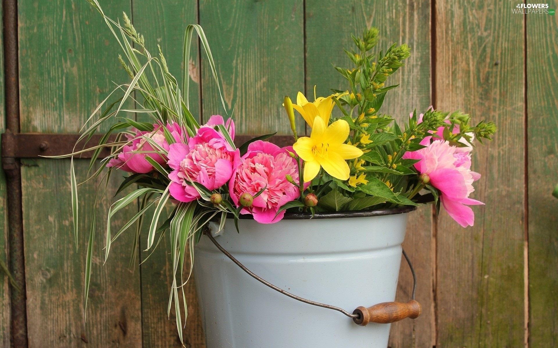 Yellow flowers pink peonies bucket flowers wallpapers 1920x1200 yellow flowers pink peonies bucket mightylinksfo