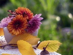 small bunch, twig, autumn, chrysanthemums