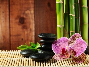 orchid, mat, bamboo, Stones
