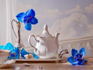 Blue, Orchidee, cup, jug, china