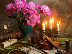 Candles, composition, Tunes, Books, violin, Peonies