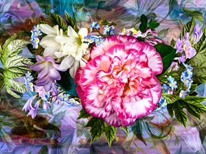 Flowers, leaves, graphics, camellia