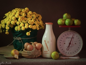 weight, bouquet, eggs, Chrysanthemums, milk, Fruits, composition
