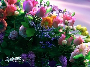 different, flowers, Kagaya, bouquet, graphics