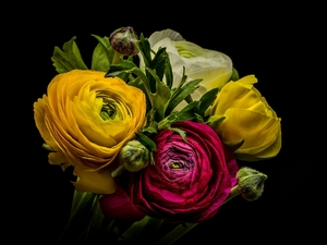 bouquet, glaucoma, Dark Background, Flowers
