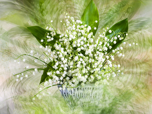 lily of the Valley, basket, Flowers, bouquet, graphics