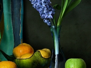 bowl, bowl, hyacinth, Fruits