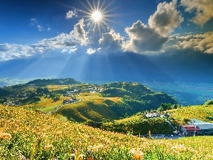 Meadow, lilies, sun, Mountains, rays