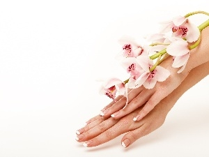 orchids, hands, Womens