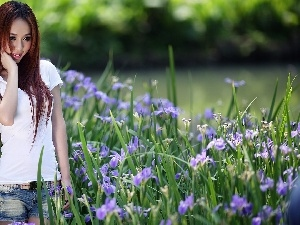 girl, flowerbed, Park, Irises
