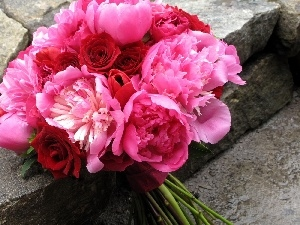 peony, bouquet, pink