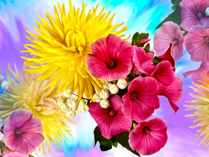 Flowers, chrysanthemum, graphics, petunia