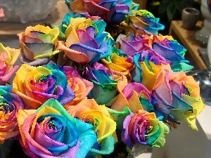 color, roses