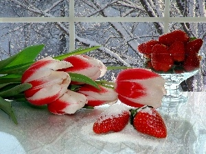 Window, Tulips, strawberries, snow