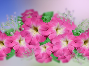 2D Graphics, Flowers, surfinia