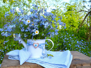 watering can, Forget, heart, daisies, bouquet, rag, tablecloth