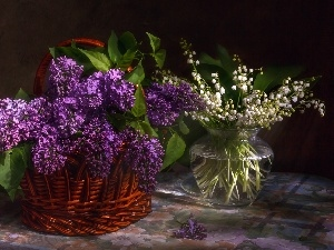 Violet, Bouquets, basket, Vase, without, lily of the Valley