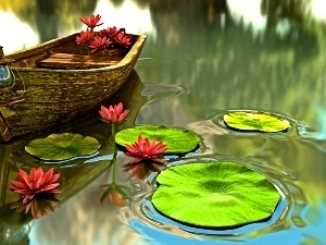 water, Boat, lilies