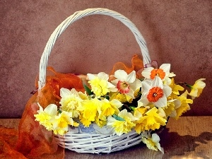 Daffodils, Flowers, basket, narcissus, Spring, wicker, apatite