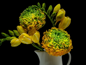 Yellow and Green, Yellow, Freesias, Flowers