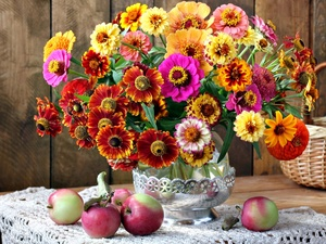 bouquet, Helenium, apples, Zinnias, Flowers, basket, composition